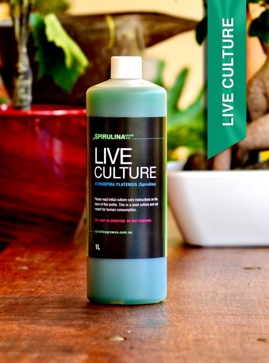 1 Litre Live Spirulina Culture for micro farming Australia