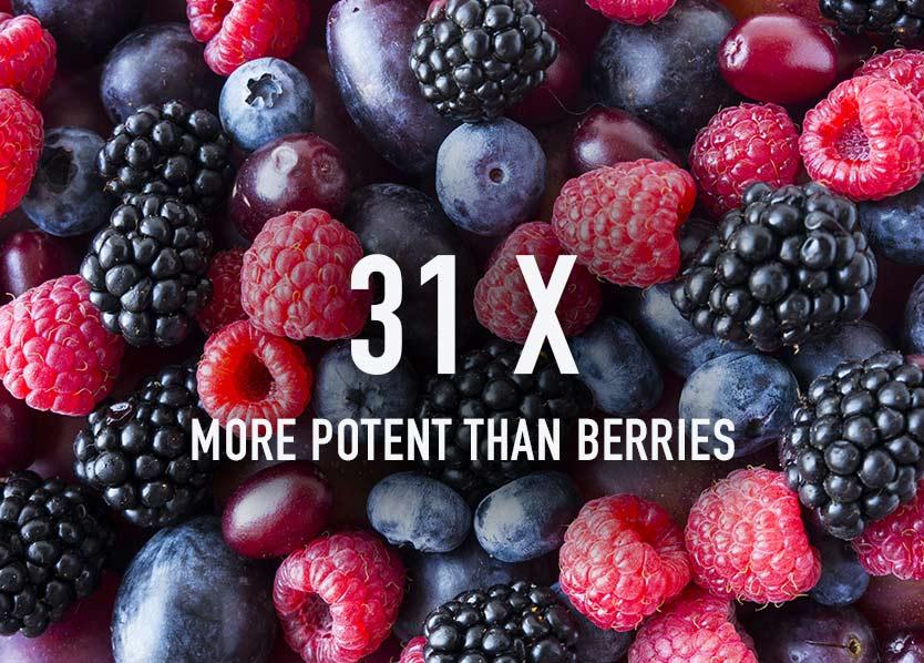 Spirulina vs berries